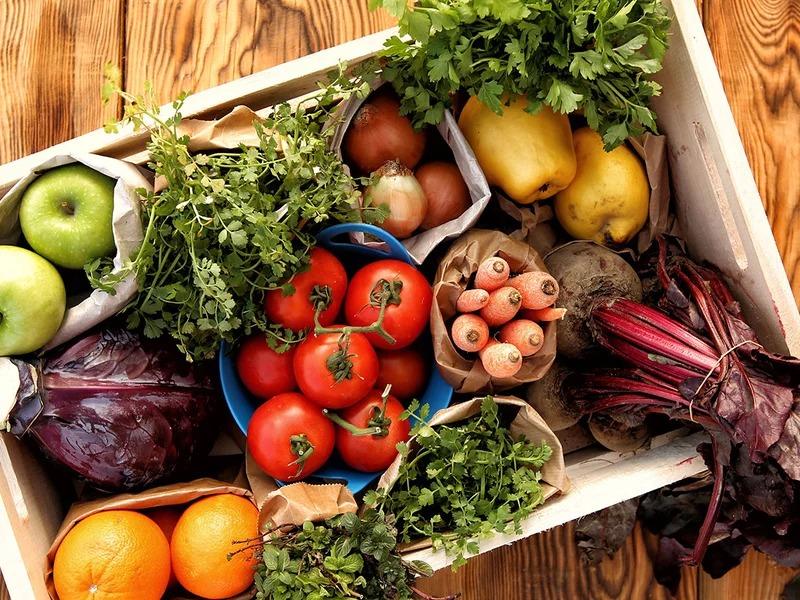 Padrões Nutricionais